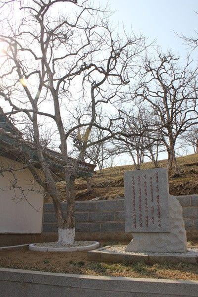 северная корея, коммунизм, третий мир