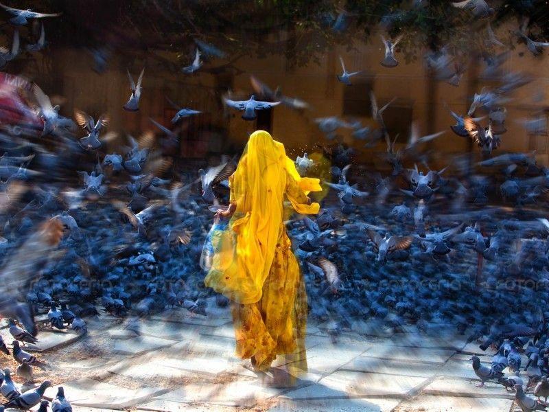 Прекрасные фото выдержка, голуби, девушка, красивое фото