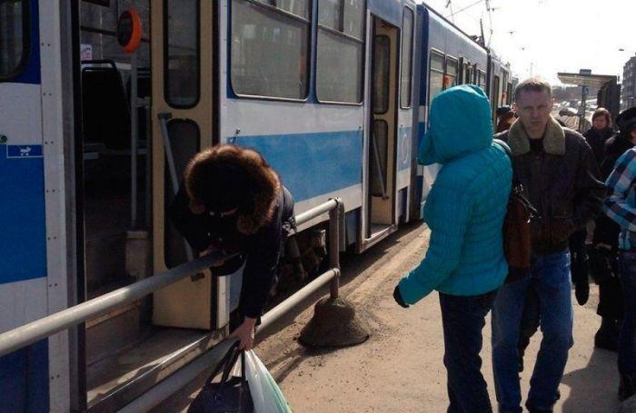 Улетное фото автобус, забор, перелезла, прикол