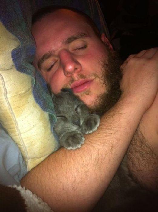 Смешные рисунки борода, кот, мужик, питомец