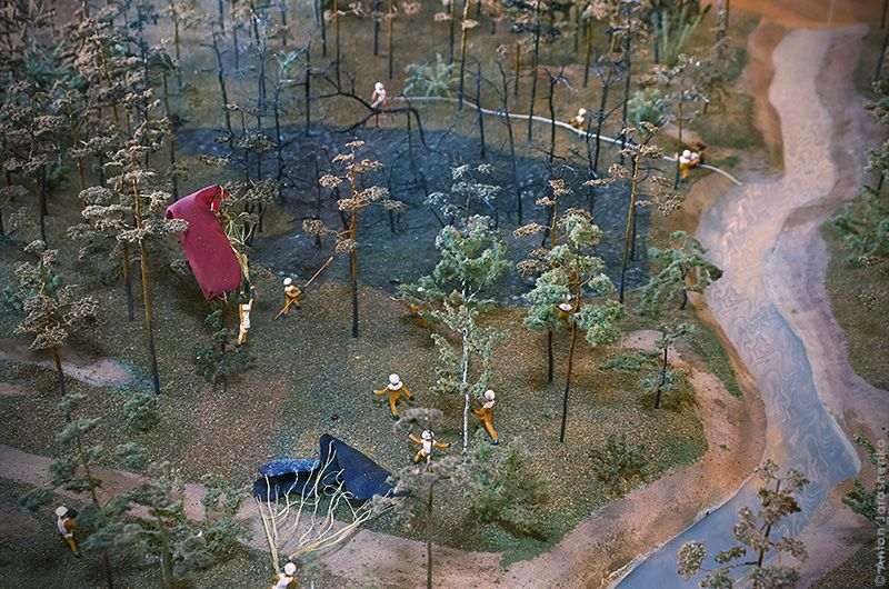Небольшой музей леса (19фото)