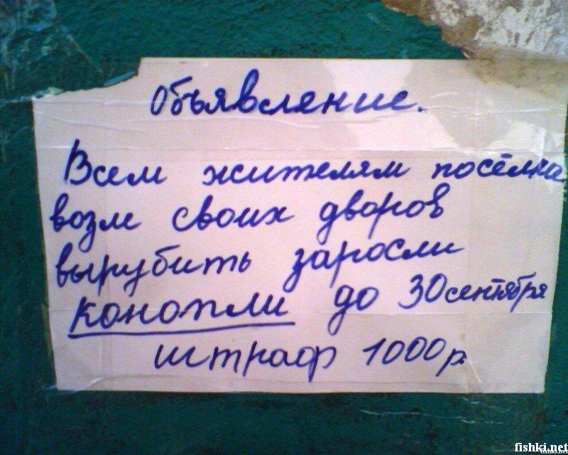 прислал - 045_prislannoe