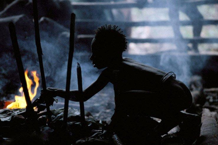 Hidden Life from Papua