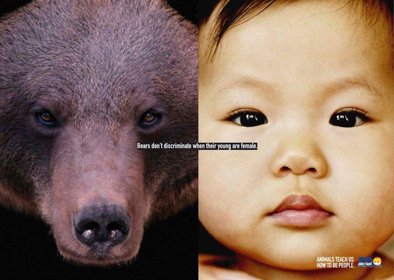 Животные научат нас, как быть людьми (постеры) 001_people_animal