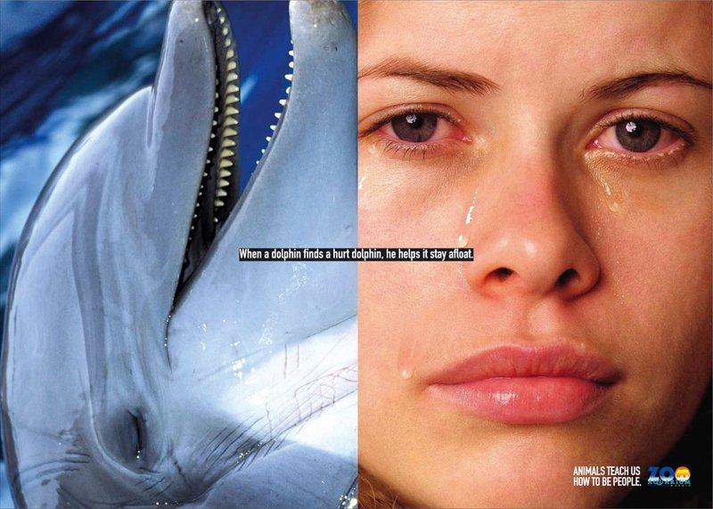 Животные научат нас, как быть людьми (постеры) 003_people_animal