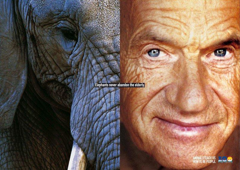 Животные научат нас, как быть людьми (постеры) 004_people_animal