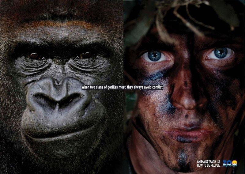 Животные научат нас, как быть людьми (постеры) 005_people_animal
