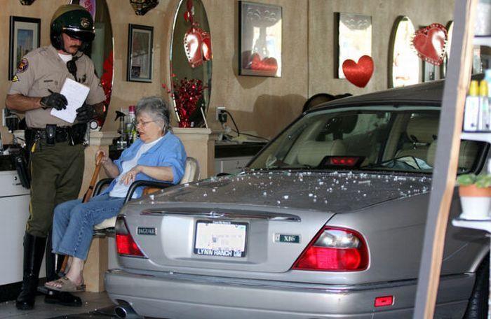 Бабуля приехала в парикмахеру (7 фото)