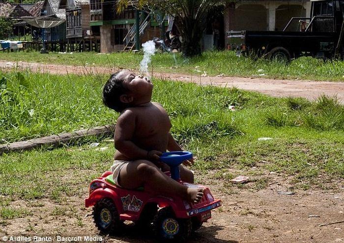 Арди Ризал, двухлетний курильщик из Индонезии (4 фото + текст)