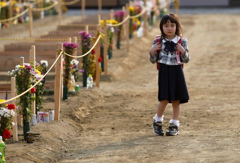 1040 990x675 Катастрофа в Японии: два месяца спустя