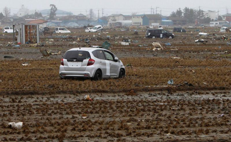 1437 990x613 Катастрофа в Японии: два месяца спустя