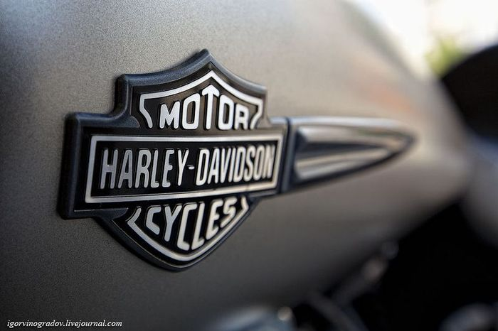 Мотоцикл Harley-Davidson крупным планом (28 фото)