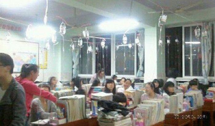 Китайские школьники поглощают знания внутривенно (4 фото)
