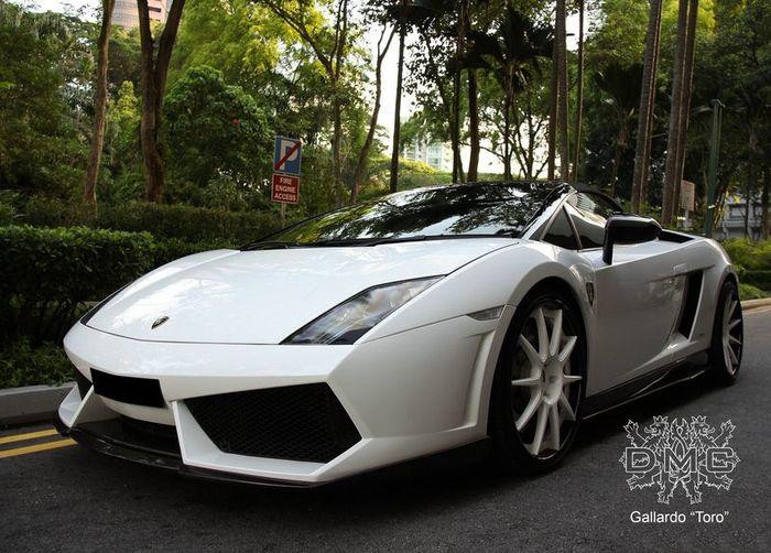 Lamborghini Gallardo прокачали в ателье DMC (8 фото)