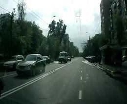 Лосиха в центре города