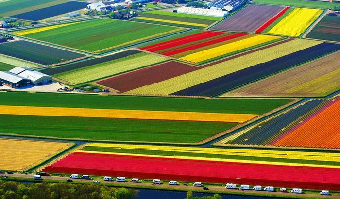 Фотографии Нидерландов с воздуха (19 фото)