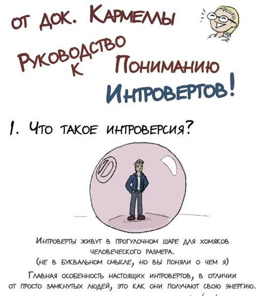 Как понять интроверта (2 фото)