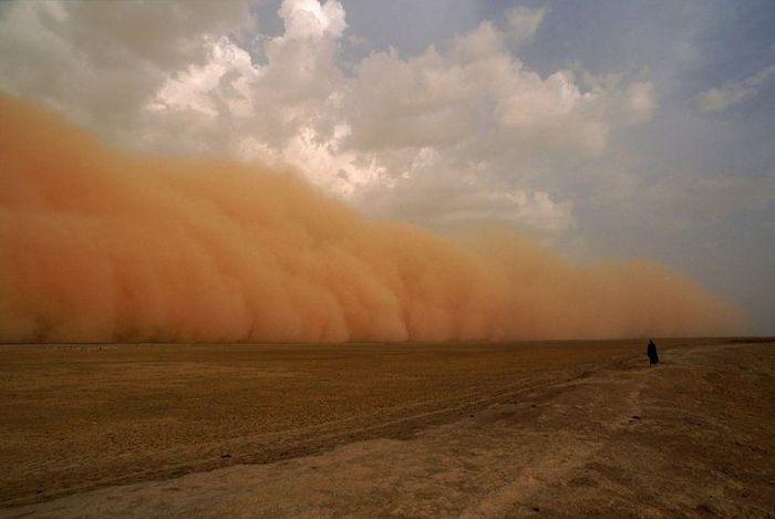 Самум - песчаная буря (17 фото)