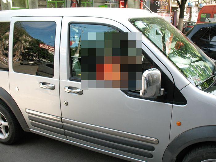 авто, необычный пассажир