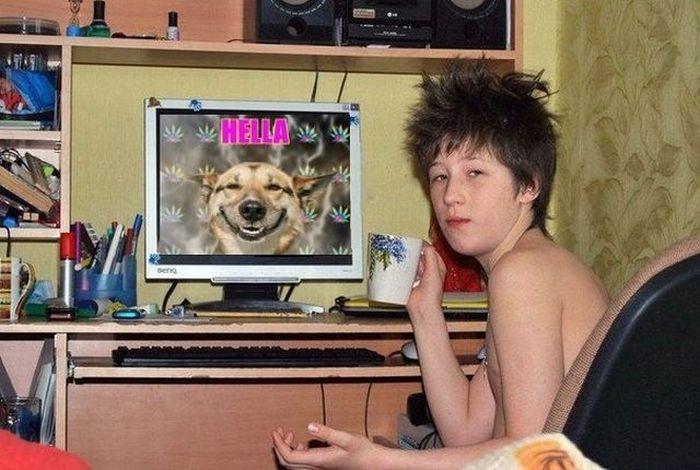 Фото прикол монитор, собака