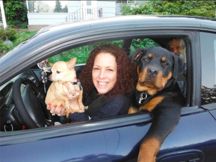 Смешная фотогалерея в машине, выражение лица, прикол, собака