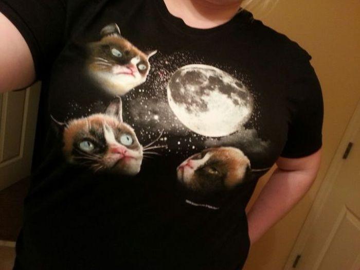 Прикольные фото кот, луна, рисунок на футболке