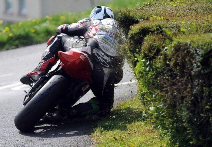 Фото онлайн байкер, крутая фотка, куст, мотоциклист