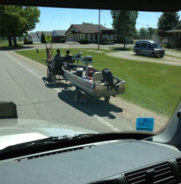 Улетное фото колесница, лодка, лошадь, прикол