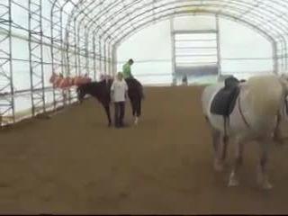 Запрыгнул на лошадь