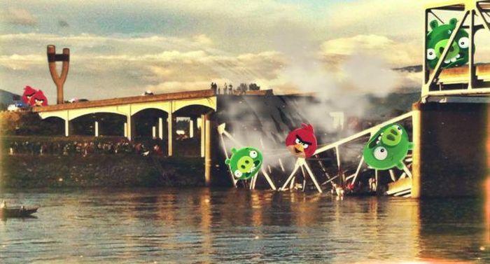 Фото прикол игра, мост, птицы, энгри бердс
