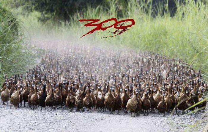 Фотоприкол фото 300 спартанцев, гуси, прикол, толпа