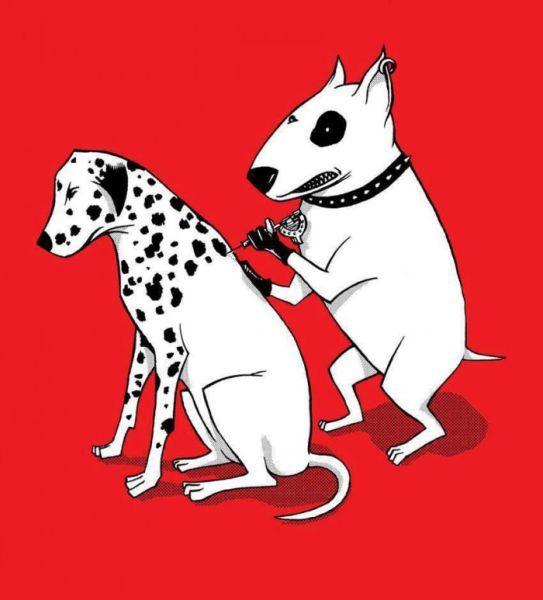 Прекрасные фото долматинец, собака, татуировка