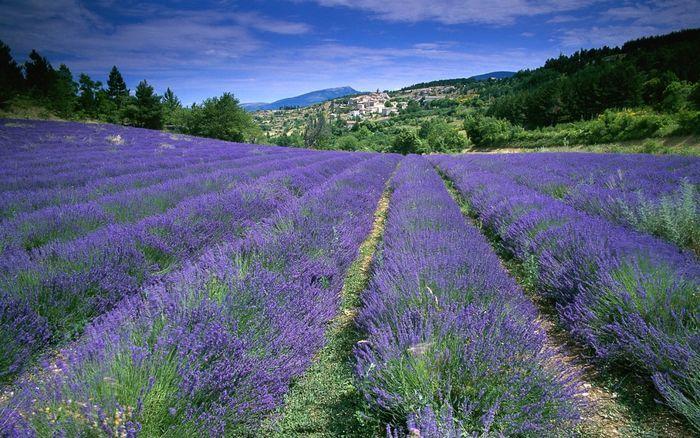 Франция с необычного ракурса