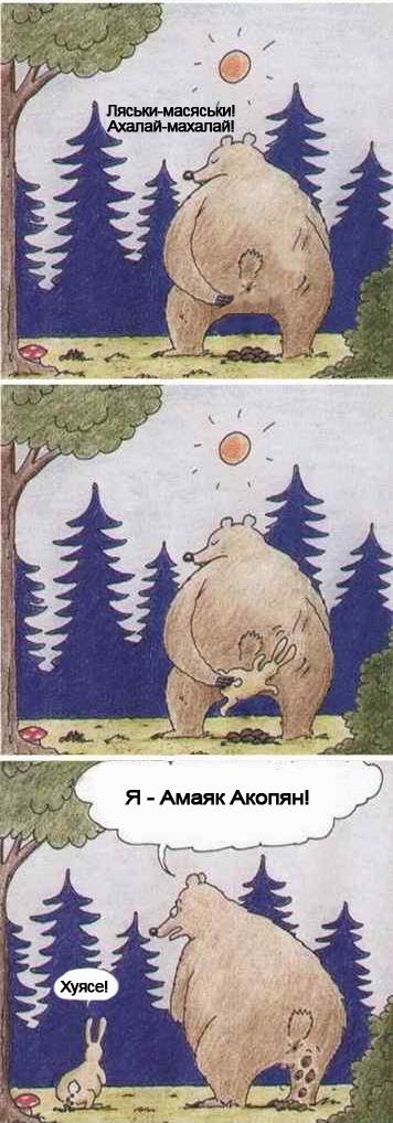 фотожаба на медведя и зайца украшения для невесты