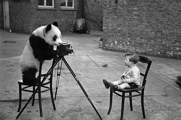 Смешное о фотографии (121 фото)