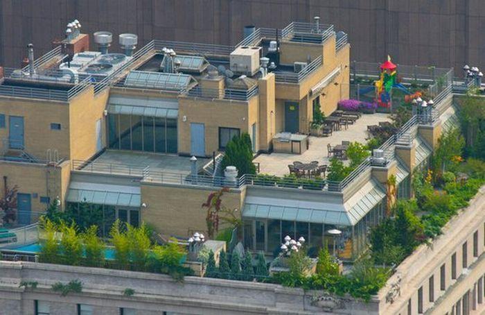 Что  творится на крышах богатых людей (20 фото)
