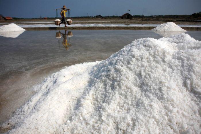 """Результат пошуку зображень за запитом """"Как добывают соль в Индии:интересные кадры - фото."""""""