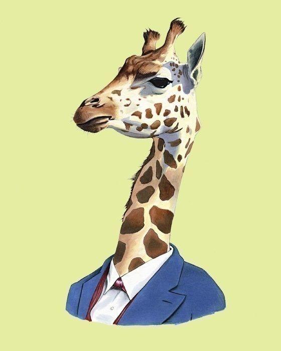 Картинки животных в одежде людей, картинки