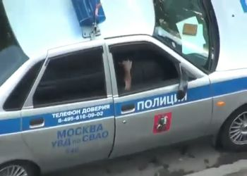 Дача взятки инспектору ДПС