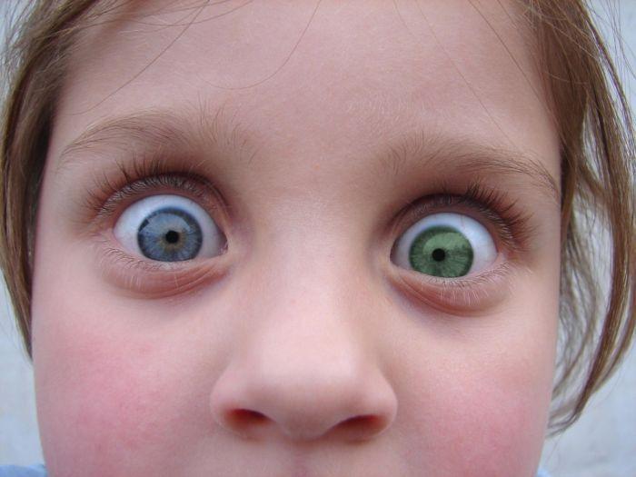 первый оказавшийся смешные глаза фото там