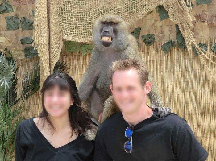 Фото с обезьянкой (4 фото)