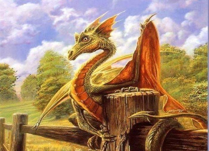 Сказочные драконы (24 Фото)