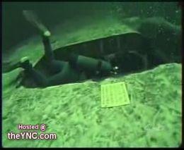 Нападение осьминога