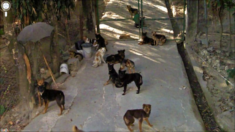 Google Street View. Часть 2. (50 фото)