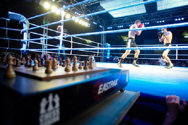 Chessboxing или шахбокс (3 фото + текст)