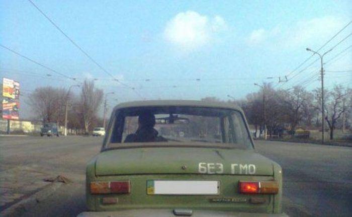 Дураки и дороги есть не только в России. Часть 2 (48 фото)