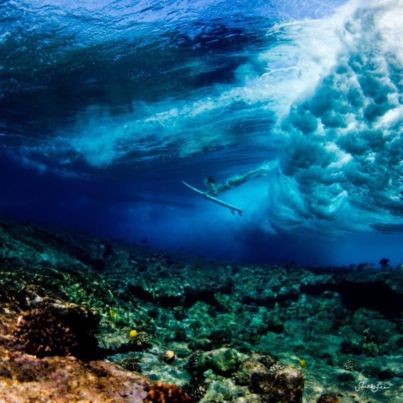 грамотном фото океана под водой заменить вид