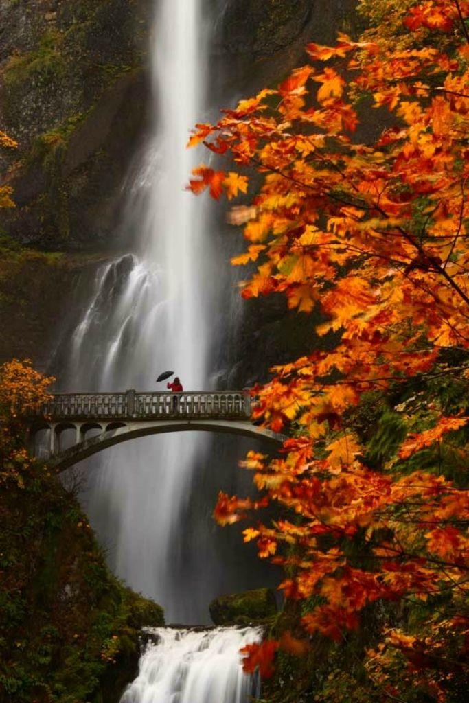важные осень картинки водопады человек