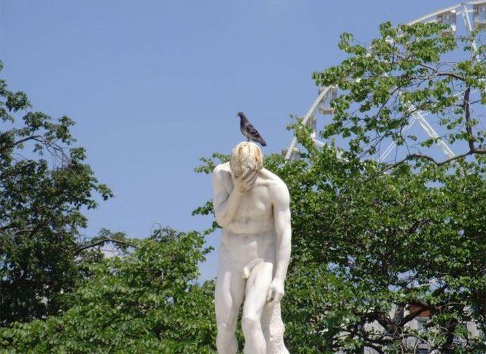 Бесплатно фото птица, статуя
