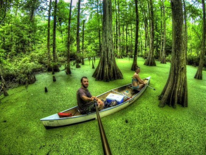 Фотоприкол недели лес, лодка